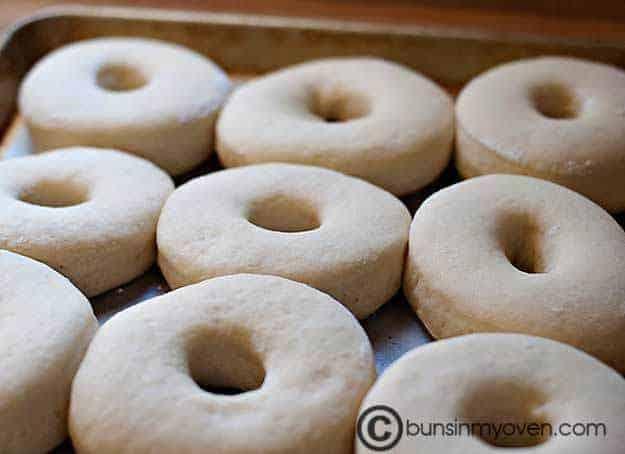 Doughnut dough rising on a baking sheet.