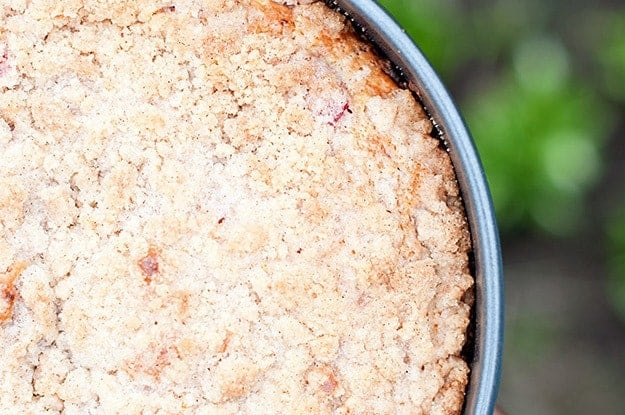 The tartness in this fruity cinnamon streusel coffee cake is perfect!