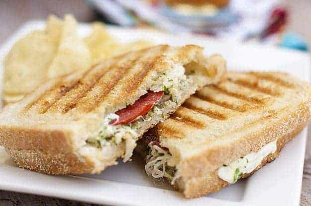 Pesto chicken panini on a white plate.
